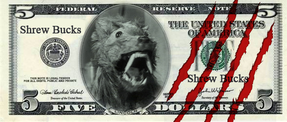 Shrew bucks